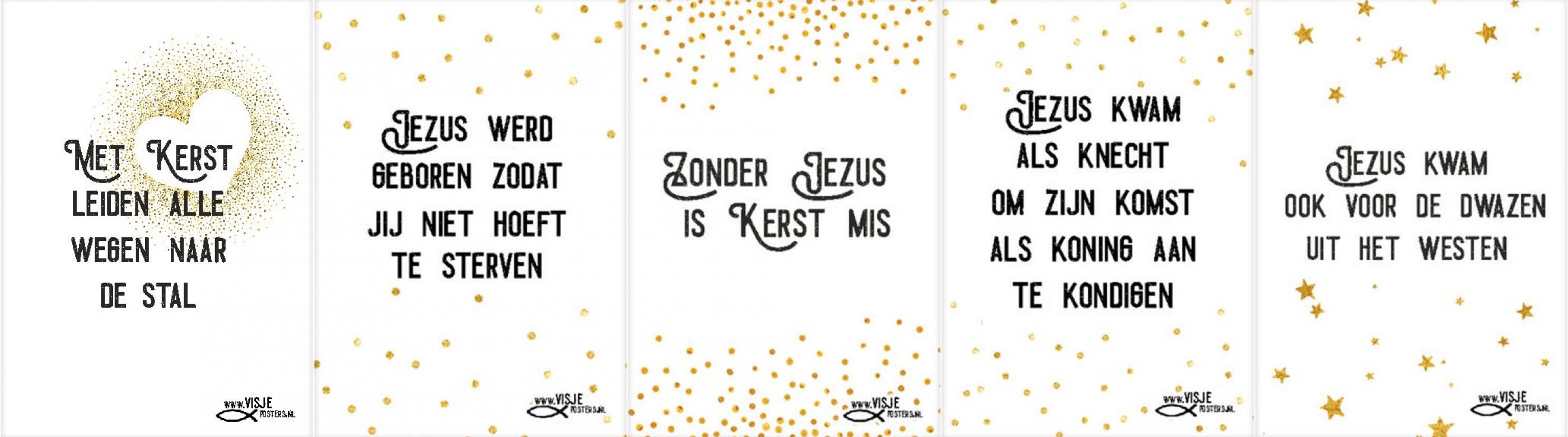 Visje_banner_kerst